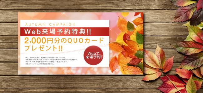 Autumn Campaign