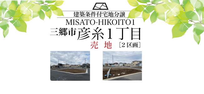 三郷市彦糸1丁目 条件付き売地(2区画)